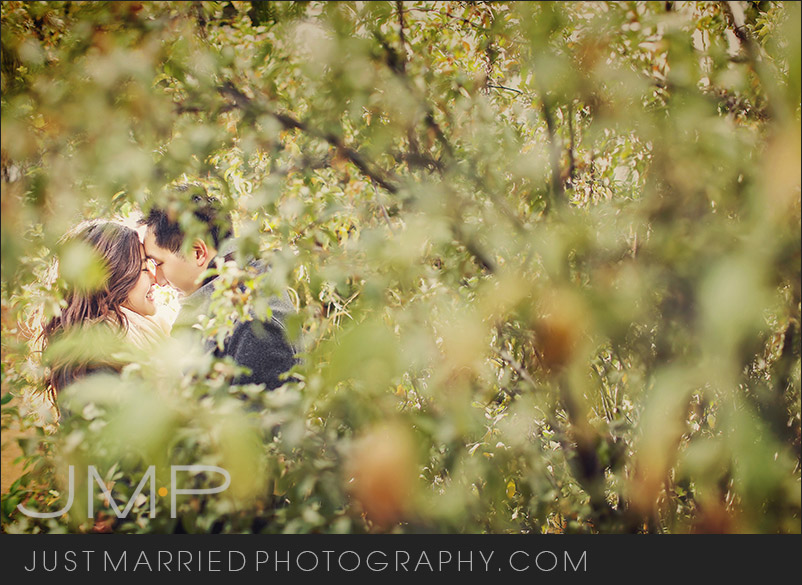 Edmonton-wedding-photographers-LSE-JMP092315.jpg