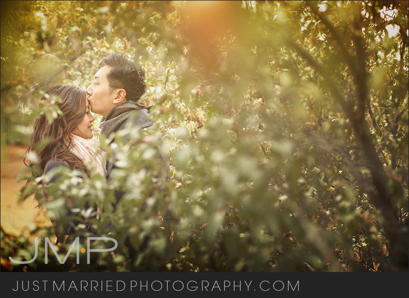 Edmonton-wedding-photographers-LSE-JMP092412.jpg