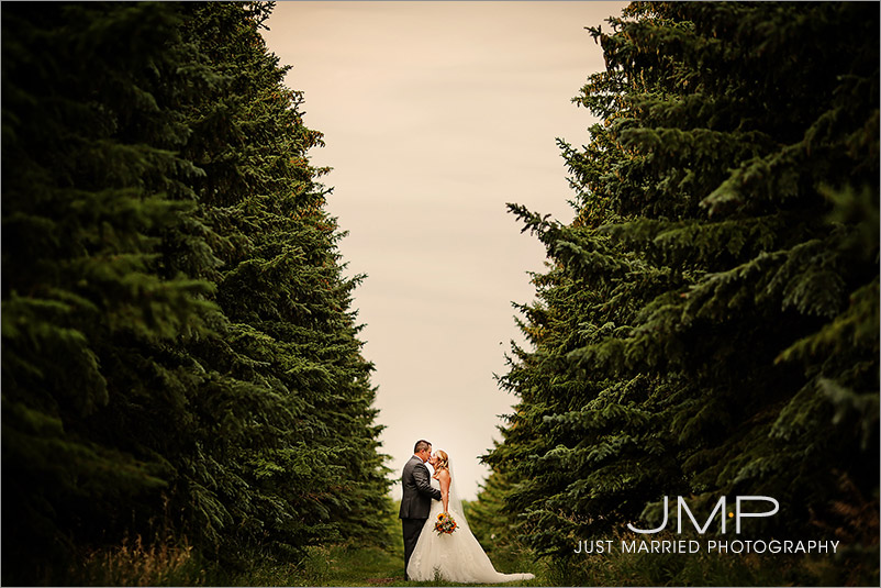 Edmonton-wedding-photographers-JJW-JMP2015-07-25-145727.jpg