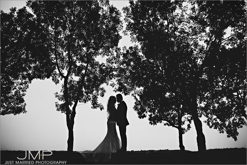 Edmonton-wedding-photographers-HSW-JMP163442.jpg