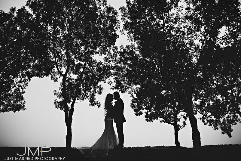 Edmonton-wedding-photographers-HSW-JMP163442.jpg